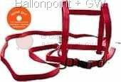 BTRG carryying strap for gigant balloons in 4 color